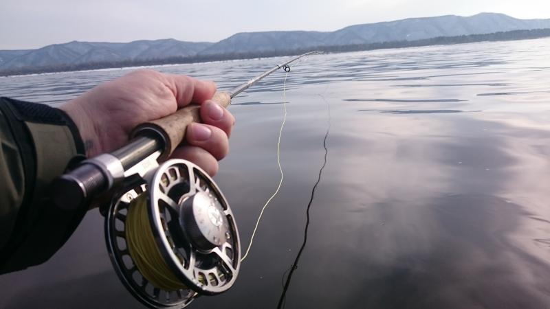 музыкальная рыбалка удачный улов